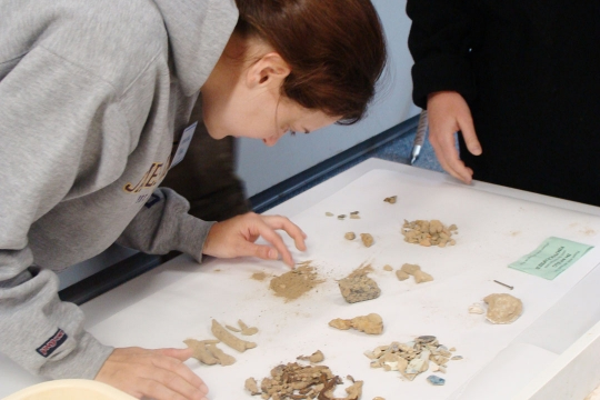 Students in an archaeology class