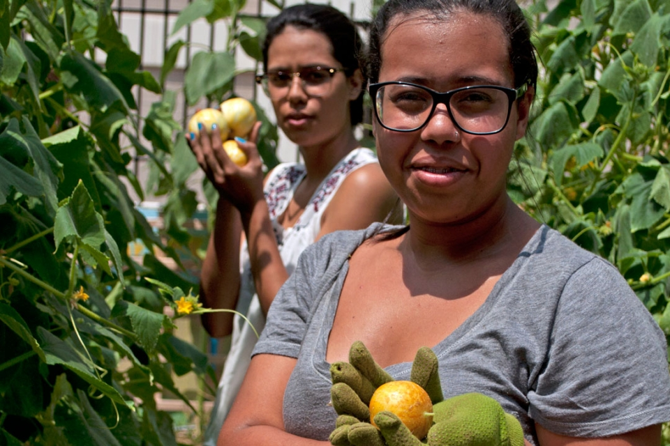 Brasilia Without Border students working in the GW GroW Garden