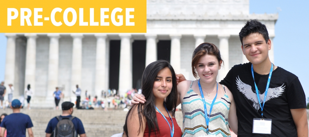 Pre-College students in front of the Lincoln Memorial in Washington, D.C.