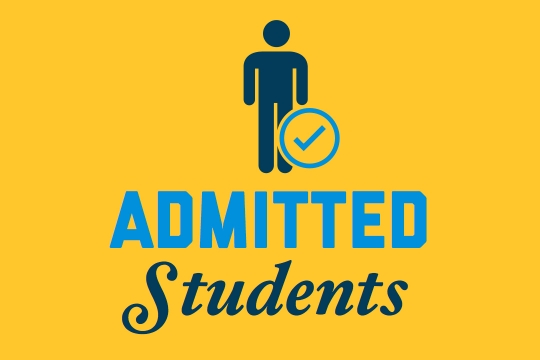 Students admitted to the international summer program