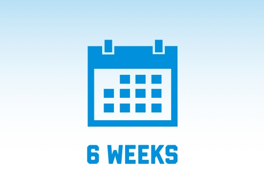 6 week course options