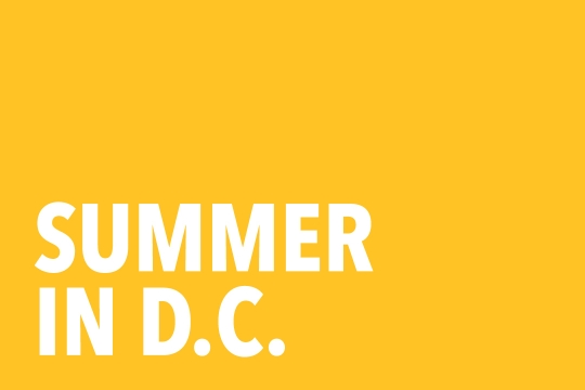 "Graphic that reads ""Summer in D.C."""