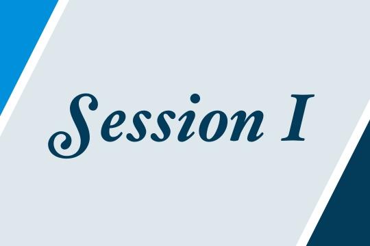 Session I graphic