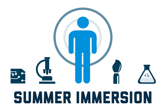Summer Immersion Graphic